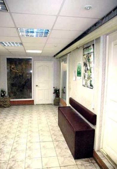Клиника Зелёный попугай, фото №5