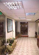 Клиника Зелёный попугай, фото №7