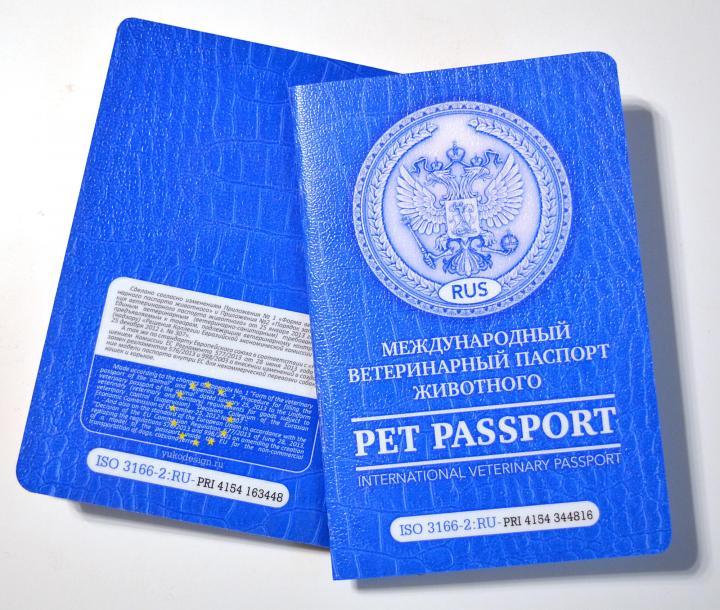 Какие сведения содержит ветеринарный паспорт животного?