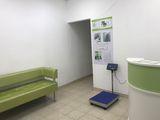 Клиника Био-Вет Саперный, фото №1