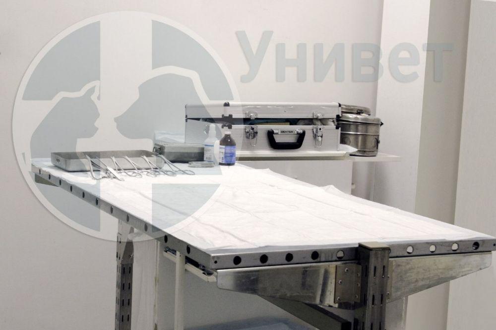 Клиника Унивет, фото №3