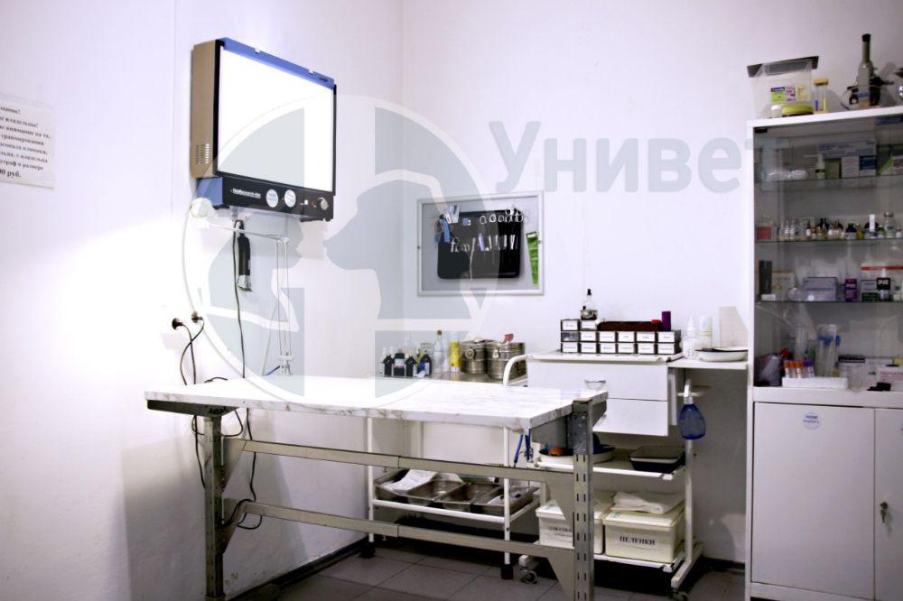 Клиника Унивет, фото №10
