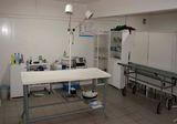 Клиника Здоровый питомец, фото №4